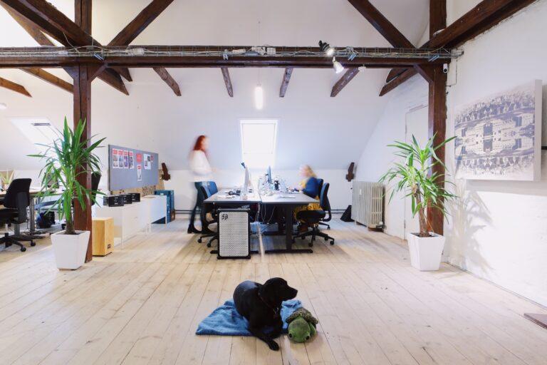 Åbben kontor plads i kontorfællesskab